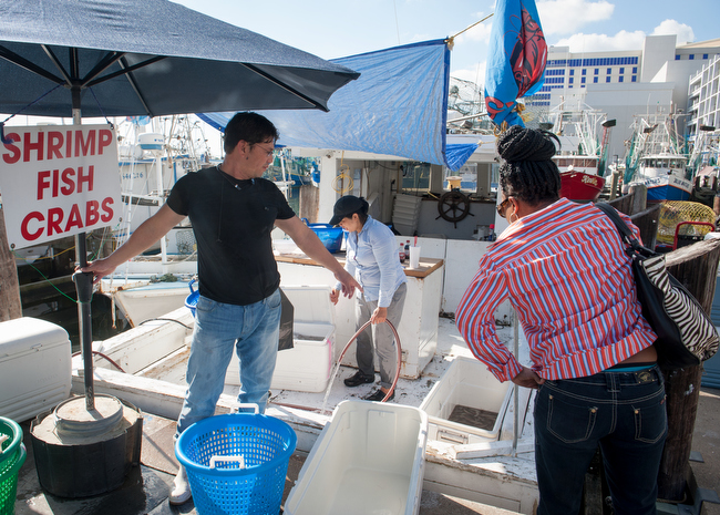 December 7, 2015 - Biloxi, Mississippi - The Biloxi Small Craft Harbor where local shrimpers dock their boats on the Biloxi coast. Here, shrimper Duc Nguyen sells shrimp to customers directly from his boat. Photo by Susana Raab/Anacostia Community Museum/Smithsonian Institution