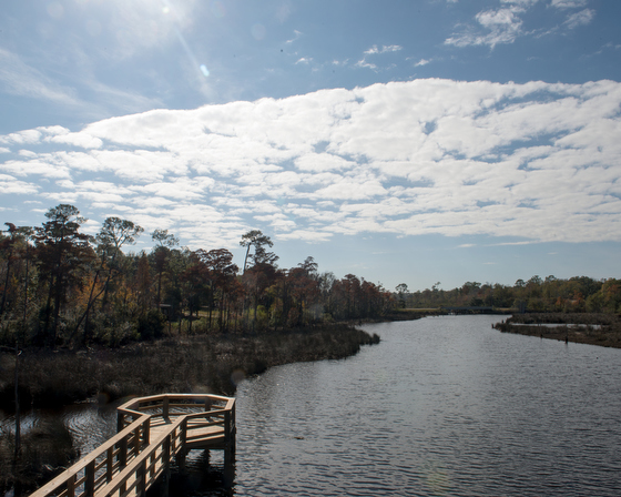 December 10, 2015 - The Pascagoula River Audubon Center in Moss Point, Mississippi. Susana Raab/Anacostia Community Museum/Smithsonian Institution